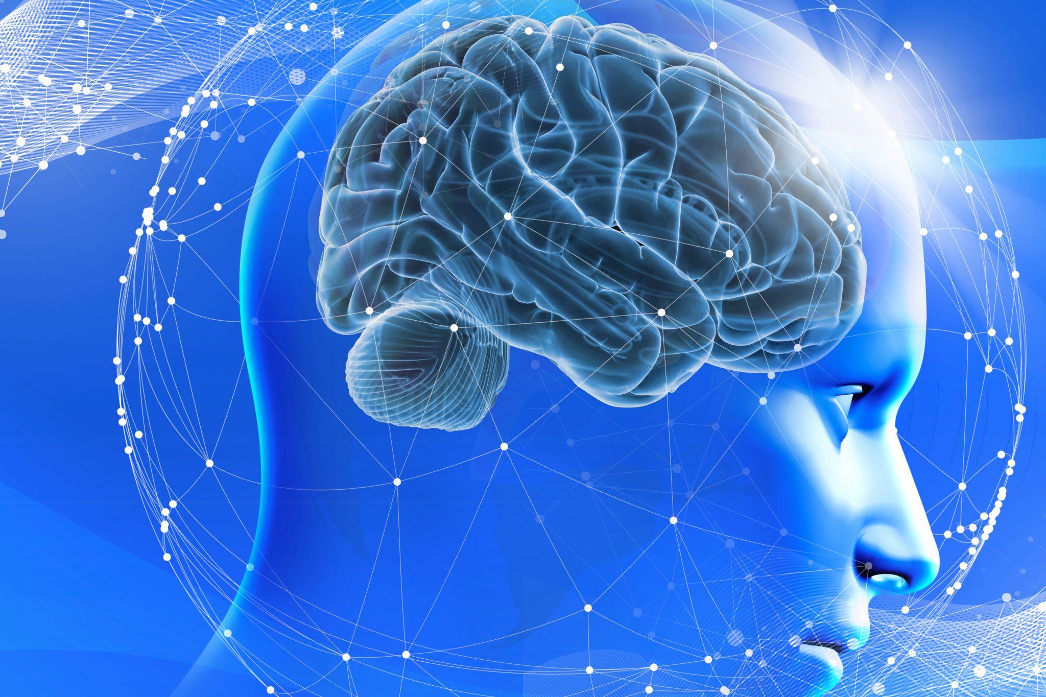 自分の存在は脳の記憶である